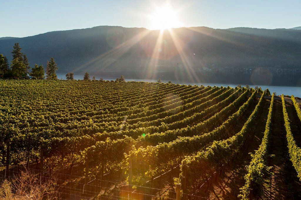Ex Nihilo winery (photo courtesy of Kelowna Tourism)