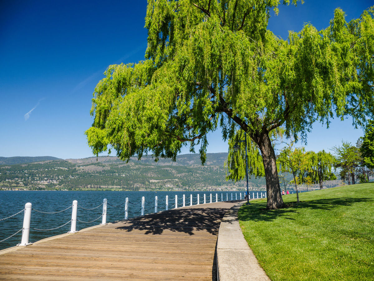 Located just a short drive away from Comfort Suites Kelowna hotel is the boardwalk at Waterfront Park.