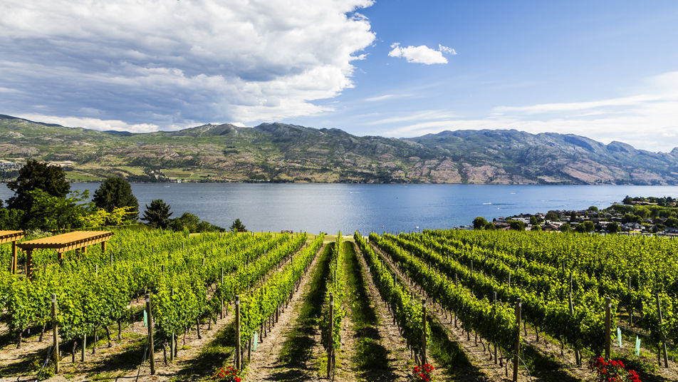 Spring into Summer with Wine Festival Events and Okanagan Wine Tours