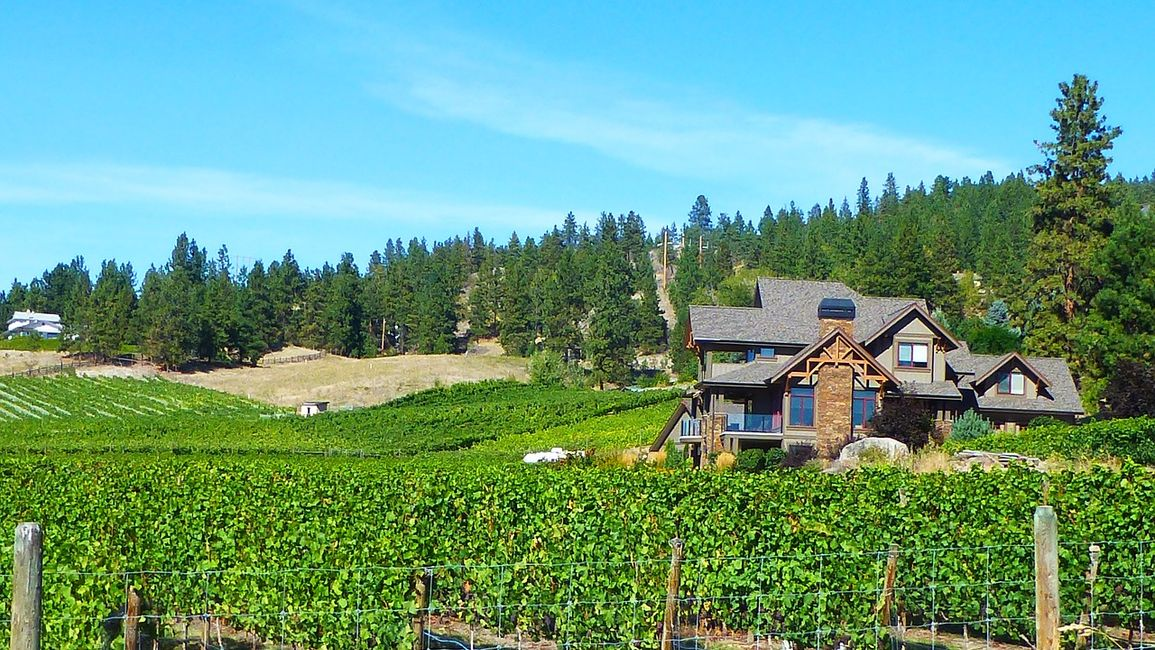 Taste Lake Country: Hop Aboard Okanagan Wine Tours for Scenic Sip Event